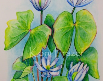 Wildflower watercolor painting, wild flowers artwork, twinleaf, wall art