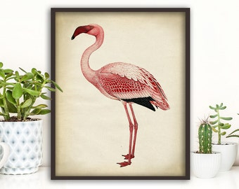 Pink flamingo print, print, flamingo poster, dorm wall art, flamingo wall decor, big bird print, pink flamingo 8x10 print