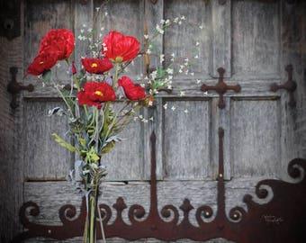 Poppies and Ironwork