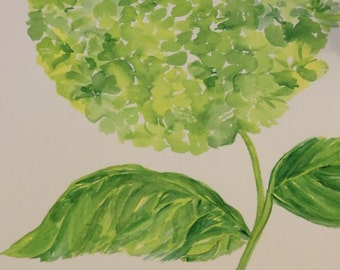 Green Hydrangea Watercolor Painting, over-sized original 12 x 20, large vertical green flower watercolor SharonFosterArt floral