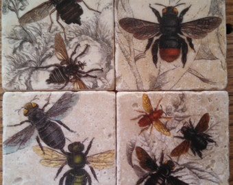 Flying Insects Marble Tile Coasters - Set of 4