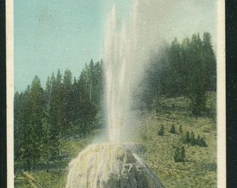 Yellowstone National Park Postcard/ Lone Star Geyser Vintage Unused