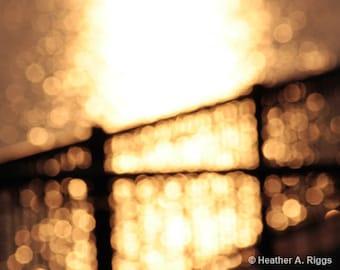 Golden Sunset, light ,circles, water, black, blurry, orange, dreamy, photograph