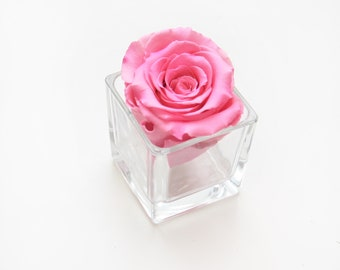 Single Preserved Deep Pink Rose Head with glass container