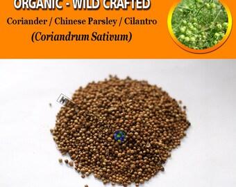Coriander Seeds Cilantro Chinese Parsley Coriandrum Sativum Organic WildCrafted Natural Fresh Herbs