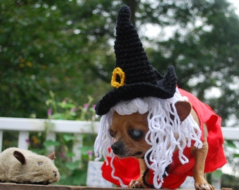 Witch Hat for Dog or Cat