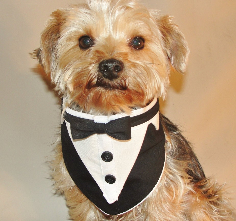 Dog Tuxedo Dog Wedding Suit Wedding Dog Clothes Dog Wedding
