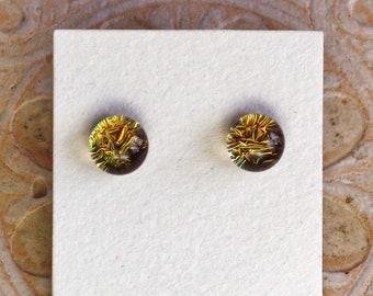 Dichroic Glass Earrings, Bronze  DGE-1355