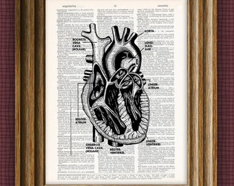 Cool human heart beautifully upcycled dictionary page book art print