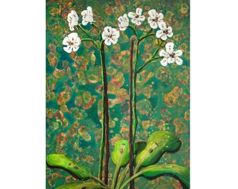 """Giclee Print - """"Audio Orchids"""""""