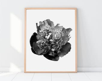 Flower Photography, Flower Photos, Flower Art, Flower Print, Flowers, Gray, Black and White Prints, Gallery Wall Print, Printable Women Gift