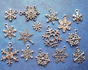 Snowflake Charm Collection in Silver Tone - C2644