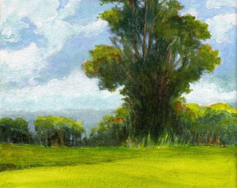 Original Landscape Painting 8x8 on canvas Oak Tree Clouds and Sky Summer Green