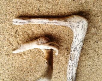 Natural Driftwood Birds