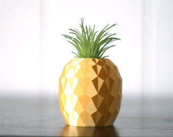 Pineapple planter, Pineapple vase, Pineapple decor, Modern air planter, Mini succulent planter, Cactus planter, Air planter,  small planter