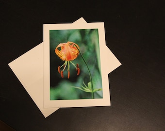 Tiger Lily photo card