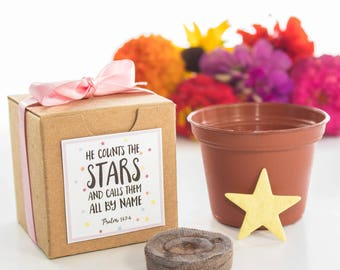 He Counts the Stars Baby Shower Favor Flower Garden Growing Kit for Boy Girl or Gender Neutral Baby Showers - Custom Orders Welcome