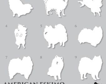 American Eskimo Decal