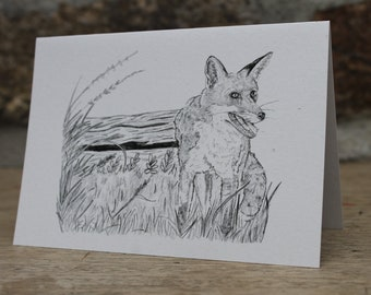 Fox - British wildlife. Blank greeting card
