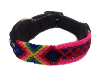 Extra Small Dog Collar XS2