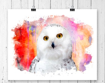 Owl #6  Watercolor  Fine  Art Print, Poster, Wall Art, Home Decor, Kids Wall Art, Play Room Wall Art, Wall Decor