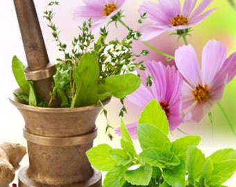 BASIL SAGE MINT  2 or 4 fl oz Aromatic Fougere Uni-Sex Fragrance Spray or 10 ml Parfum - Accords; Aromatic, Fresh, Fresh Spicy, Green, Minty