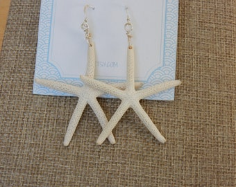 Real Star Fish Dangle Earrings, Sterling Silver Ear Wires. Handmade. Beach and Tropical Style. Boho