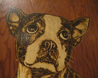 """Wonderful Vintage Eichorn Process Company 1938 Advertising Sign """"Advertising With Appeal"""" Featuring An Adorable Boston Terrier"""
