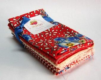 Merry Go Round Fat Eights Bundle - Retro Fabrics - Stash Builder - American Jane Moda 7 Cuts Blue Red Florals Dots Stripes - Fabric Destash