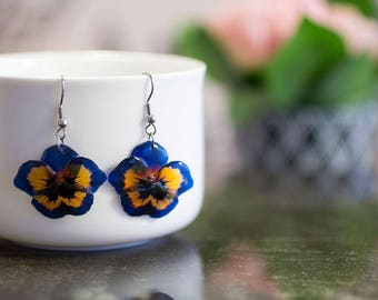 Dark blue and yellow pansy flower earrings. Comes in a gift box. Steel hooks.