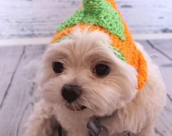 Crochet Dog Snood, Crochet dog Hat, Halloween costume for dog, Pumpkin, Photo Prop,