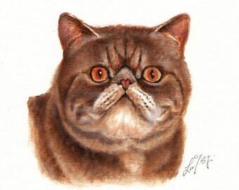 Original Oil CAT Portrait Painting EXOTIC SHORTHAIR Art On Canvas Kitten Signed