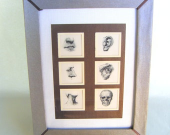 Vintage Human Facial Anatomy Print in Handcrafted Frame Medical Illustration Graphic Head Science Art Doctor Ear Nose Throat