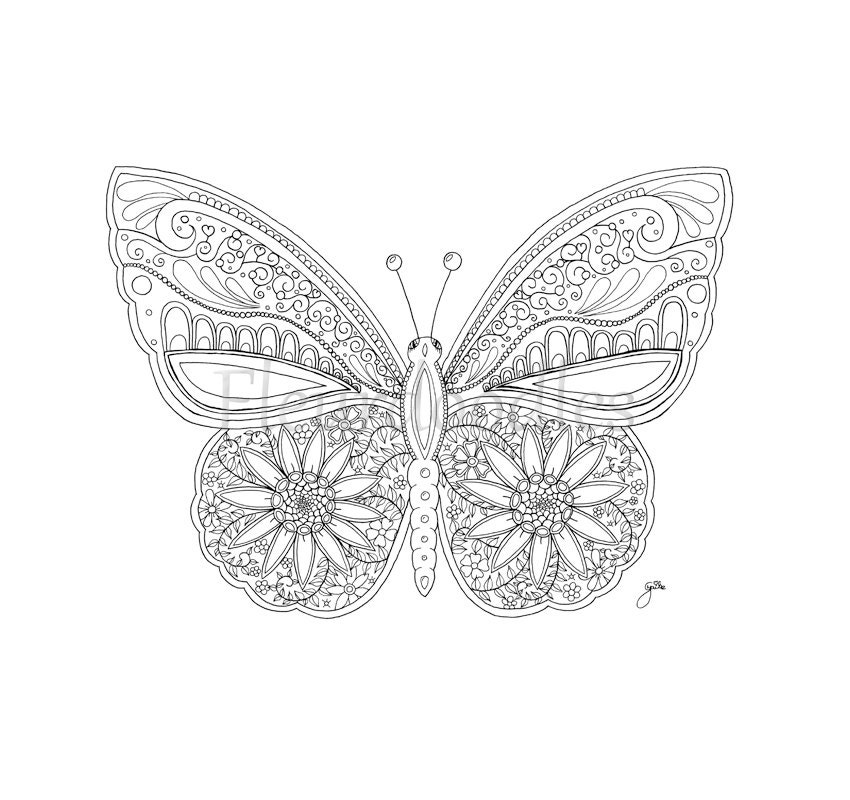 Schmetterling Malseite für Erwachsene Malseiten