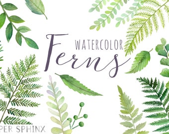 Watercolor Ferns Clipart | Forest Leaves Clipart - Greenery Leaf Branches and Stems - Wedding Invitation Clip Art - Instant Download PNGs