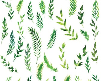 Green Field Ferns - Ceramic Decals- Enamel Decal - Fusible Decal - Glass Fusing Decal ~ Waterslide Decal - 88608