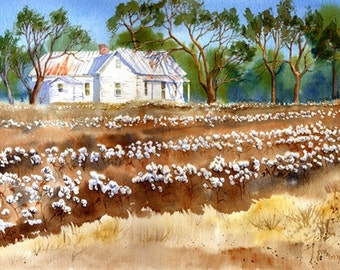 Cotton Fields Back Home giclee print from original watercolor
