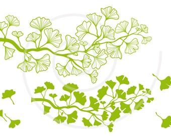 Ginkgo tree branch digital clip art, green ginkgo leaf clipart, illustration, drawing, home decor, SVG, EPS, vector, instant download
