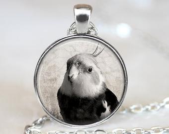 Cockatiel Pendant, Bird Art Necklace, Cockatiel Jewelry, Bird Art Pendant, Bird Jewelry, Cockatiel Gift, Bird Pendant, Bronze, Silver, 009