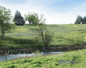 Farm Backdrop Digital Backdrop Spring Blue Bonnets Sitter Family Download Field Old Farm Flowers Fairytale Composite Landscape hay Field