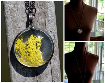 Large Moss Necklace, Terrarium Jewelry, Large Moss Pendant, Nature Jewelry, Garden Necklace, Plant Jewelry, Botanical Necklace (2587)