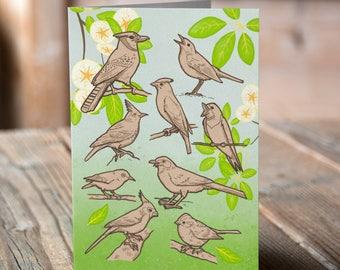 Songbirds Greetings card