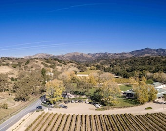 Wine County Vineyard in Los Olivos Panoramic Photo