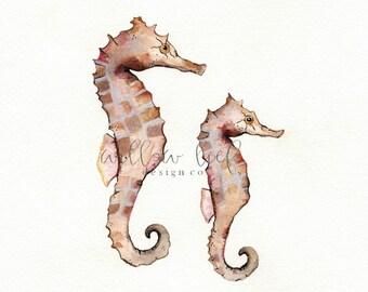 Seahorse Naturals, watercolor print, tan, coral, cream , sealife, ocean life