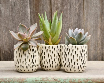 Set of Three Handmade Ceramic Monochrome Teardrop Planters