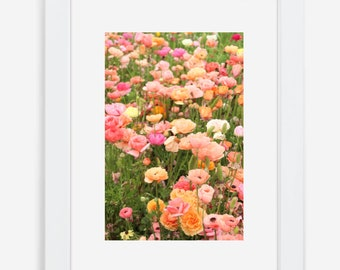 Wall Art / Home Decor / Ranunculus / Bohemian Decor / Floral Print / Framed Wall Art / Farmhouse Decor / Flower Fields / Charlotte Print