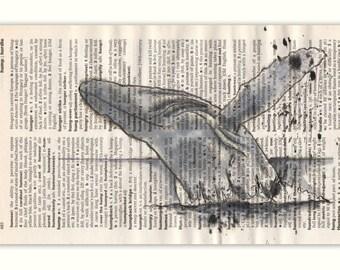 Humpback Whale Greetings Card
