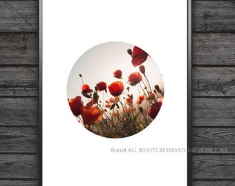 Poppy Printable Art, Poppies Print, Poppies Printable Art, Instant Download, Digital Download, Wall Art, Nature Print, Home Decor, Poppies