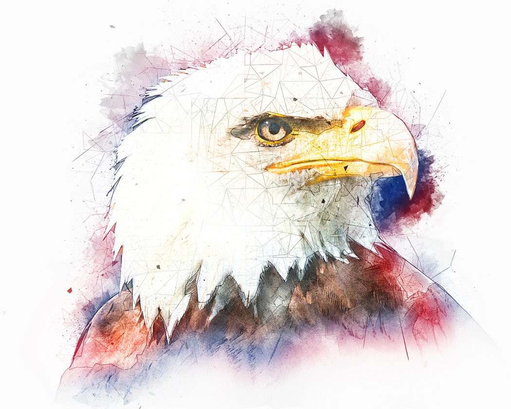 Eagle Art Patriotic Watercolor Red White and Blue Bald