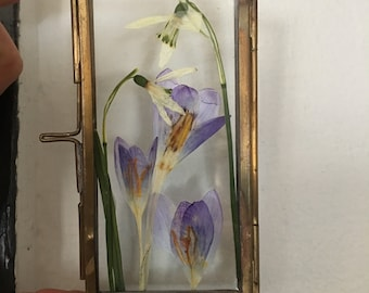 Crocus and Snowdrop Rectangle